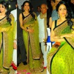 Bollywood actresses wearing saree dress (6)