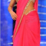 Bollywood actresses wearing saree dress (2)