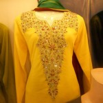 Formals nice party wear dress collection 2013 (3)
