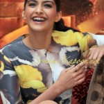 Indian Actress sonam kapoor profile (4)