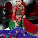 Indian Choli Lehnga Collectoin 2013 for women (1)