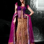 Indian Choli Lehnga Collectoin 2013 for women (3)
