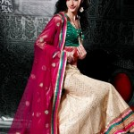 Indian Choli Lehnga Collectoin 2013 for women (4)
