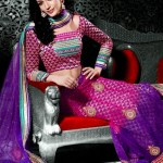 Indian Choli Lehnga Collectoin 2013 for women (5)