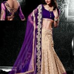 Indian Choli Lehnga Collectoin 2013 for women (6)