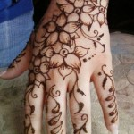 Irani and Persian mehndi designs (1)