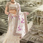 Natasha Couture Party saree and lehnga collection (10)