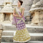 Natasha Couture Party saree and lehnga collection (5)