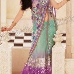 Natasha Couture Trendy Shringaar sarees dress (4)