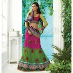 Party wear lehenga choli dress collection (5)Party wear lehenga choli dress collection (5)