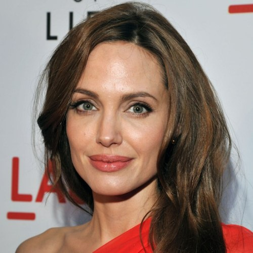 Angelina Jolie actress long hairstyle (3)