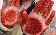Bridal Stylish Mehndi Design (6)