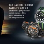 Citizen Eco-Drive Beautiful Wrist Watches (6)