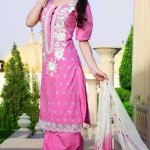 Indian Classy Churidar Suits For women 2013 (3)
