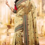 Indian Party wear saree dress for girls 2013