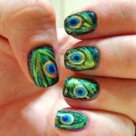 Peacock birds nails art designs (2)
