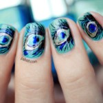 Peacock birds nails art designs (1)