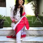 Aysha Anees Eid Collection 2013 for Girls (8)