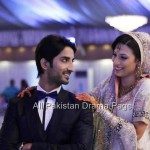 Famous Fashion Model ZAHID TAIMOOR wedding waleema pictures (11)