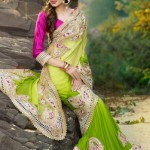 Indian Designer Latest and Beautiful Saree Collection For Women (1)