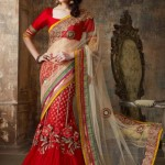 Indian Designer Latest and Beautiful Saree Collection For Women (3)