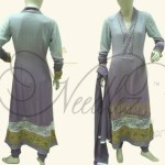 Needlez by Shalimar Beautiful Women Dresses (4)