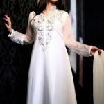 ZZ Embroidered Dress Collection 2013 For Women (1)