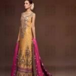 Ahmad Bilal Gorgeous Bridal Collection 2013-2014