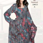 Brasso by Dawood Textiles Winter Collection 2013-2014 For Ladies (1)