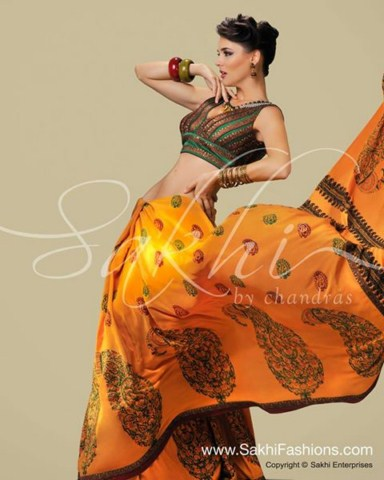 Sakhi Fashions Indian Elegance Saree For Women