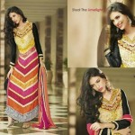 Anarkali Luxury Royal Dresses for Ladies (1)