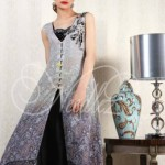 Needlez by Shalimar Winter Collection 2013-14 For Women (5)