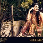 Vestimentum Stylish AutumnWinter Dresses Collection 2013 (6)