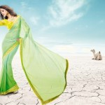 Bollywood Movie Rajkumar Saheli Couture Elegance Stylish Luxury Saree (10)