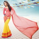 Bollywood Movie Rajkumar Saheli Couture Elegance Stylish Luxury Saree (4)