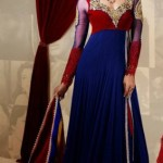Kaneesha Indian Girls Latest Sarees Collection 2013 (5)