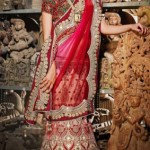 Kaneesha Indian Girls Latest Sarees Collection 2013 (1)