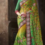 Kaneesha Indian Girls Latest Sarees Collection 2013 (4)