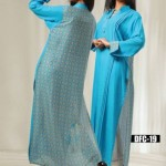 Fall Winter 2014 Dress Collection By Dicha Clothing (6)