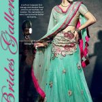 Latest New Trend Fashionable Bridal Lehnga Choli 2014 For Girls