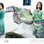 Resham Ghar Eid Collection 2015 (6)