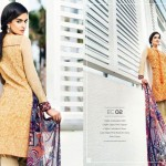 Resham Ghar Eid Collection 2015 (3)