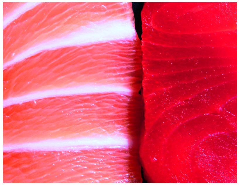 Is farmed salmon good for you?