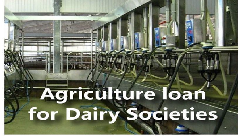 How to easily Financing a Dairy Farm Modernization to get high turnover